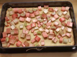 Rhabarber-Topfen-Kuchen 14